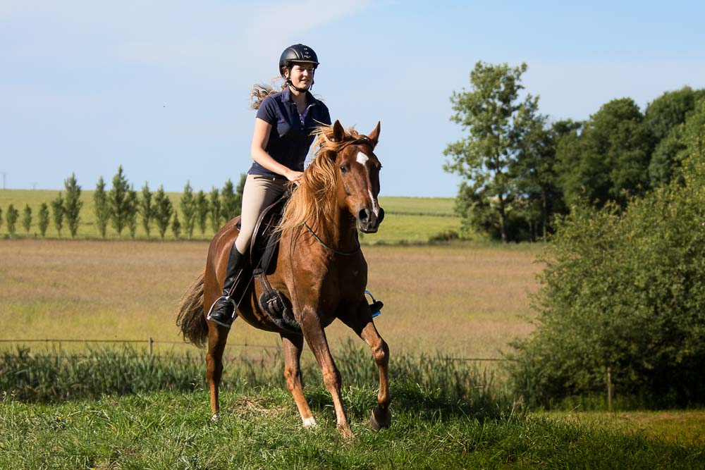 Gabi Neurohr riding chestnut Barb Arabian gelding bitless