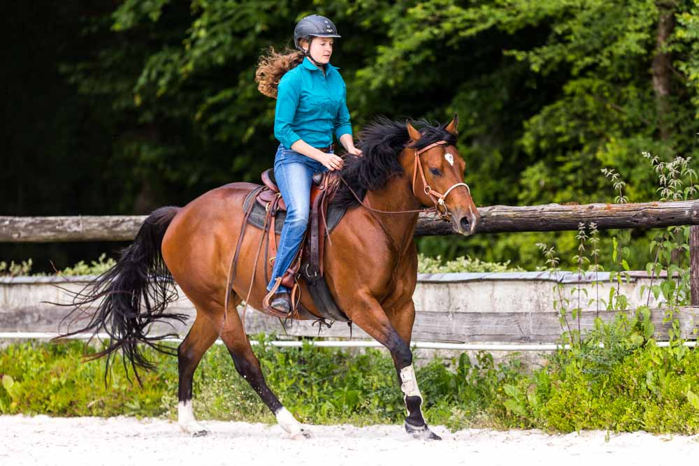 Gab Neurohr Horse Education - Quarter Horse mare ridden in canter