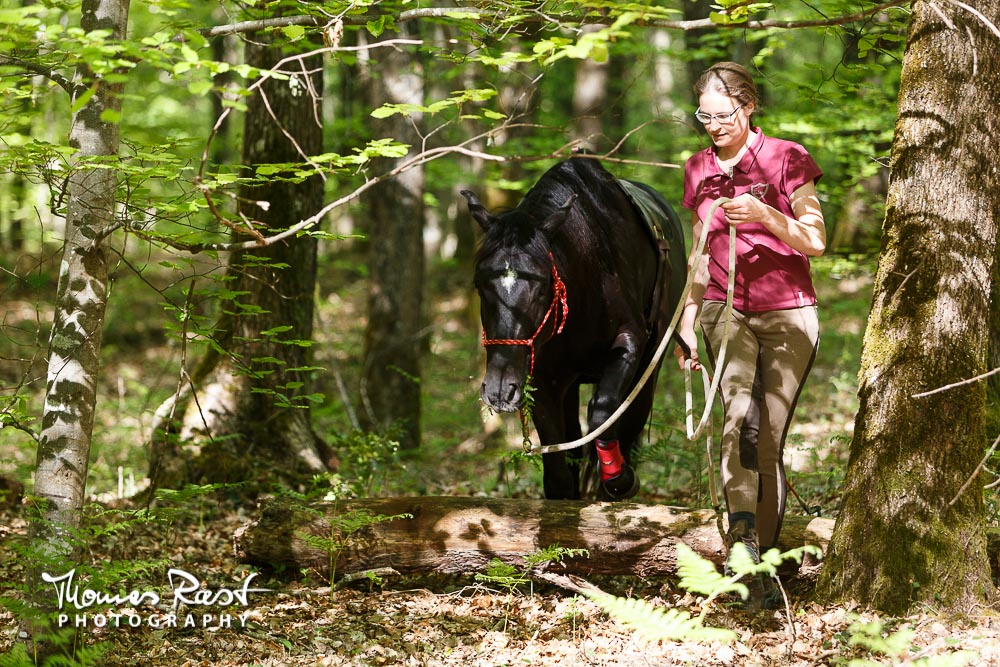 Gabi Neurohr Pre Saddle Training - Confidence in the Forest