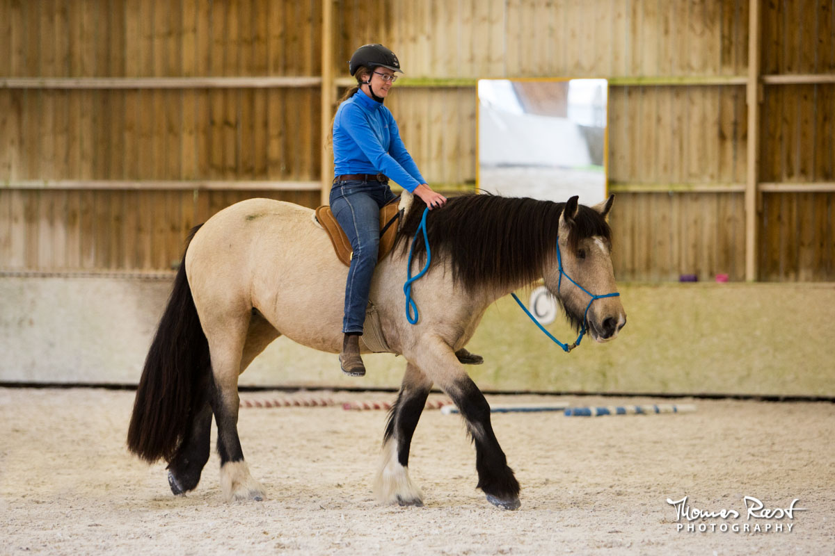 Gabi Neurohr Colt Starting - first ride of Irish Cob mare Eleven
