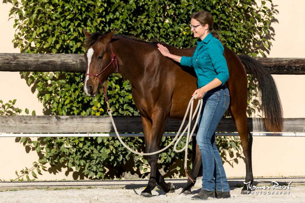 Gabi Neurohr Young Horse Education - leading Shagya filly from zone 3