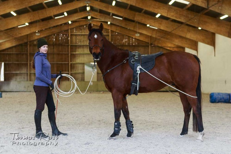 Gabi Neurohr horse training - Zayins outfit to increase body awareness