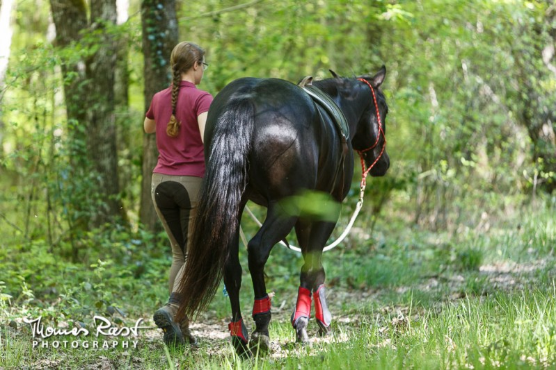 Gabi Neurohr colt starting walk in the forest with my young horse