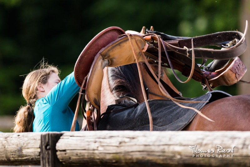 Gabi Neurohr foundation training - a horse expert is saddling a young horse with confidence